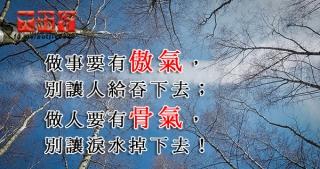 做事要有傲氣,別讓人給吞下去;做人要有骨氣,別讓淚水掉下去!