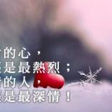 冰封的心,曾經是最熱烈;無情的人,曾經是最深情!