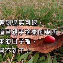 總要等到退無可退,才知道曾親手捨棄的東西,在後來的日子裡,再也遇不到了!