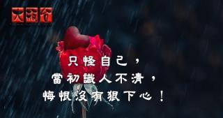 只怪自己,當初識人不清,悔恨沒有狠下心!